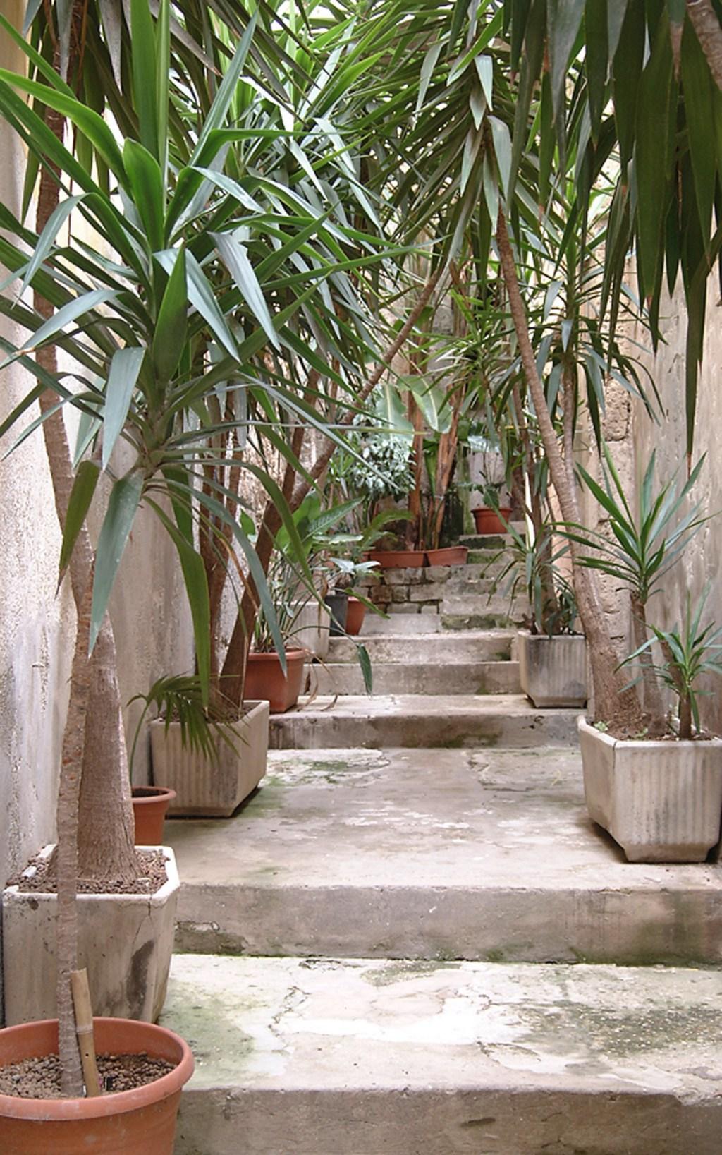 Schrage Architekten Oasis